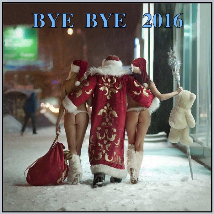 bye-bye-2016